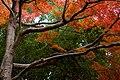 Kameyama Park (2700619418).jpg