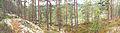 Kanavuori panorama 2.jpg