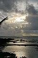 Kapoho Tide Pools, Waiopae, Pahoa (504179) (22930818856).jpg