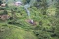 Kashebere, Nord-Kivu, RD Congo- Une fumée se dégage du feu de charbon de bois à Kashebere au début de la matinée. (22779735056).jpg
