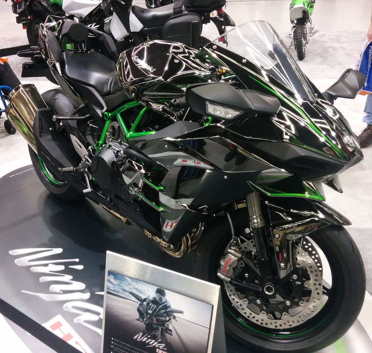 Kawasaki Ninja  Single Cylinder