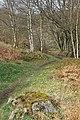 Keil's Den, Pitcruvie - geograph.org.uk - 753412.jpg