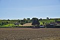 Kellergasse im Tal (Trasdorf) (DSC02308).jpg