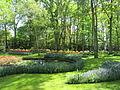 Keukenhof Garden (38).JPG