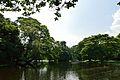 Kings Lake - Indian Botanic Garden - Howrah 2012-09-20 0070.JPG