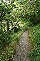 Kingswear, garden walk - geograph.org.uk - 805971.jpg