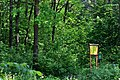 Kivertsi Volynska-Dubovyk nature monument-view with boards.jpg