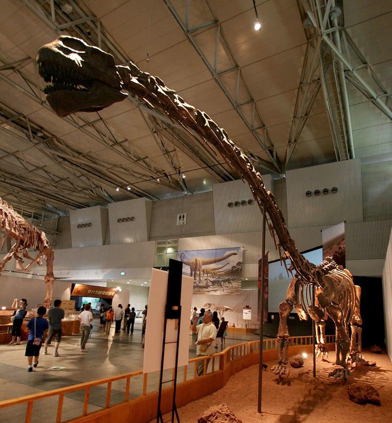 Klamelisaurus mount