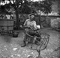Košaro dela iz beke in kostanja, Dekani 1949.jpg