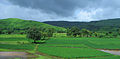 Konkan Railway - views from train on a Monsoon Season (42).JPG