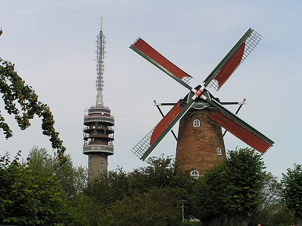Koornbloem en TV-toren.jpg
