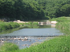 Korea-Gyeongju-River bank-02.jpg