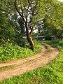 Krasny, Smolensk Oblast, Russia, 216100 - panoramio (1).jpg