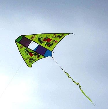 L'aquilone in volo.jpg