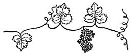Spiritisme allan kardec wikimonde - Feuille de vigne dessin ...