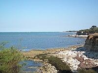 La côte à St Denis d'Oléron.JPG