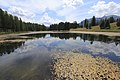Lac de Roue3~2017 07 18.jpg