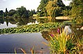 Lake at Spetchley Park Gardens - geograph.org.uk - 630274.jpg
