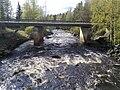 Lankoski2009.jpg