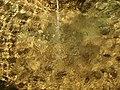 Le Tholonet-FR-13-centre-fontaine-texture d'eau-01.jpg