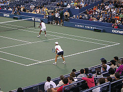 Leander Paes and Martina Navaratilova pairing up in a Mixed doubles event