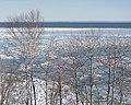 Leif Erikson Park, Duluth 2 21 18 -trees -winter (25566486787).jpg