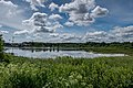 Liebiadziny reserve (Belarus) 23.jpg
