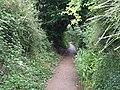 Lime Kiln Lane - geograph.org.uk - 912788.jpg