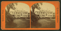 Longfellow's house, head-qrs. of Washington, by Lewis, Thomas, d. 1901.png