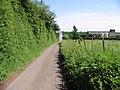 Looking SE along lane towards Standardhill Farm - geograph.org.uk - 850401.jpg