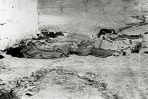 Chinese massacre of 1871 - Corpses of Chinese immigrants who were murdered during the massacre