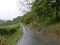 Lovely lane near Llanerchcoedlan Wells, Breconshire - geograph.org.uk - 443190.jpg