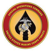MARSOC Emblem
