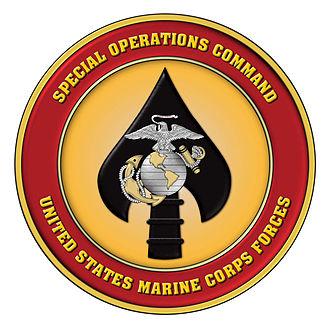 Organization of the United States Marine Corps - Image: MARSOC Emblem