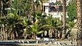 MacArthur Park, Los Angeles, CA, USA - panoramio (16).jpg