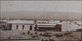 Madryn in 1880 (1).png