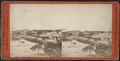 Main Ave, Ocean Grove, from Robert N. Dennis collection of stereoscopic views.png