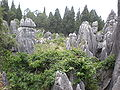 Major Stone Forest NE outer area 12.JPG