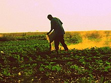 agricultural topics for essays
