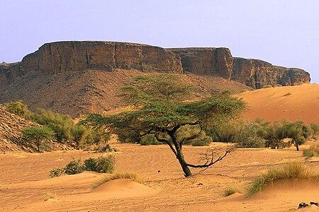 تعالو معي في كل مرة ولاية جديدة..................... 450px-Mauritanie_-_A