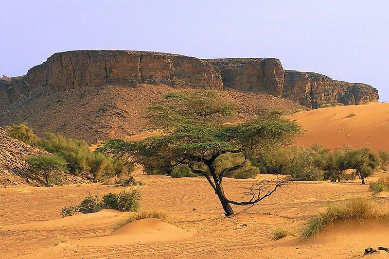 Vé máy bay giá rẻ đi Mauritanie