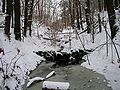 Middlesex-Fells-in-December.jpg