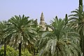Minaret campanile Cordoue palmiers.jpg