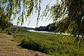 Minho River Lapela 2.jpg