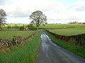 Minor Road Near Courance - geograph.org.uk - 289503.jpg