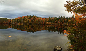 Gene Likens -  Mirror Lake, 2015