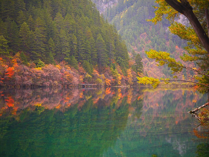 Mirror Lake Jiuzhaigou.jpg