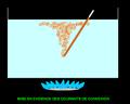Mise en évidence des Courants de convexion Eau.PNG