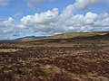 Moorland near Drum Ddu - geograph.org.uk - 1238851.jpg