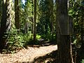 Mount Adams Wilderness Sign 04.JPG